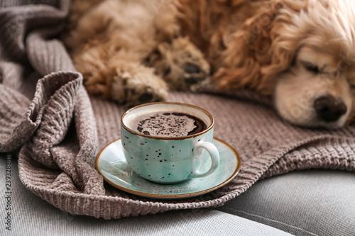 Fotografie, Obraz  Cup of tasty aromatic coffee and cute sleeping dog on sofa