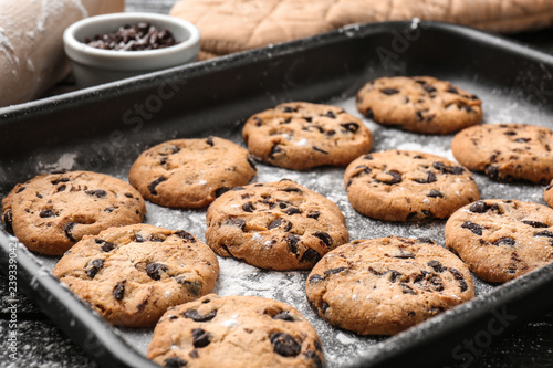 Tasty cookies with chocolate chips on baking tray Canvas Print