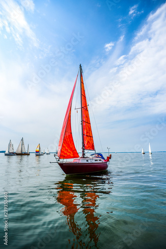 Yacht with red sails sailing in the sea against the background of other yachts. Wall mural
