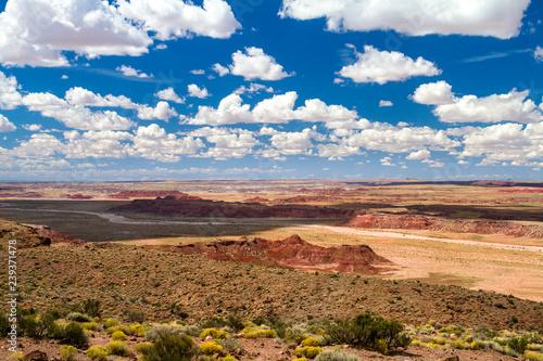 Photo  Wide open land of the Panited Desert in Arizona, USA
