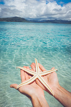 Man's Hands Holding Starfish By Sea