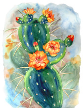 Blooming Prickly Pear, Watercolor Painting, Impressionism, Expression.
