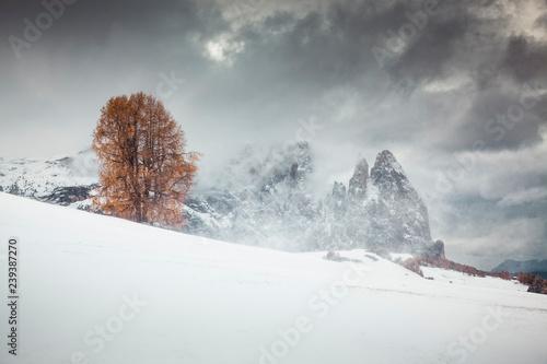 sniezny-wczesny-zimowy-krajobraz-w-alpe-di-siusi-dolomity-wlochy-miejsce-na-ferie-zimowe