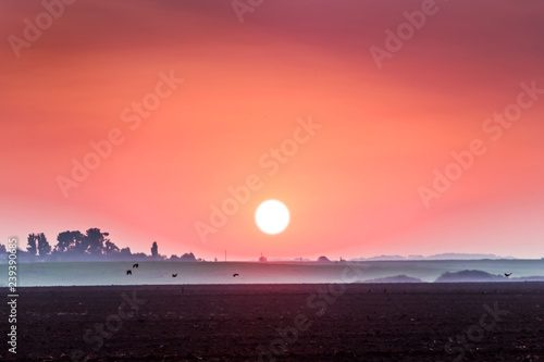 Spoed Foto op Canvas Koraal Rural landscape overlooking the plowed field during the sunrise_