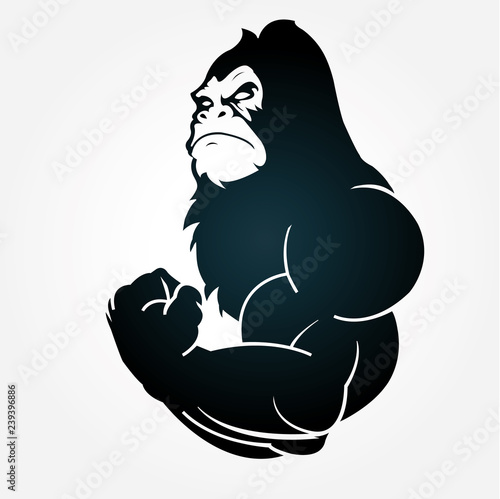 Fotografija Gorilla