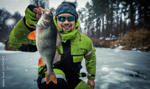 Printed kitchen splashbacks Fishing Trophy perch. Ice fishing background.