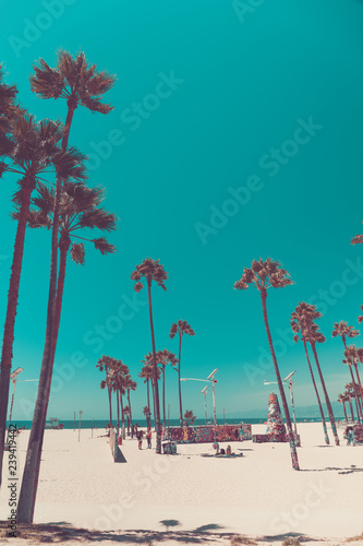 Tripical beach with palm trees. Holiday and vacation concept. California landscape