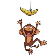 Funny Monkey Trying To Catch Banana
