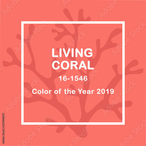 Living Coral color of the year 2019  Living Coral swatch