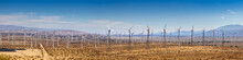 Panorama Of Wind Farm In Palm ...