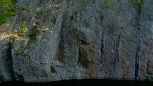 Droneshot Of A Lonely Tree Growing On A Cliffside Of A Mountain.