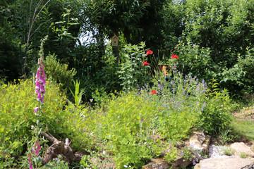 Blüten im Naturgarten