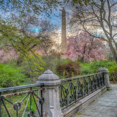 Fototapeta Nowy York Central Park, New York City in spring