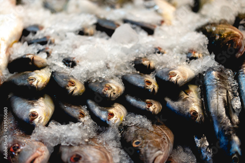 Türaufkleber Makrofotografie Fish under ice at a market
