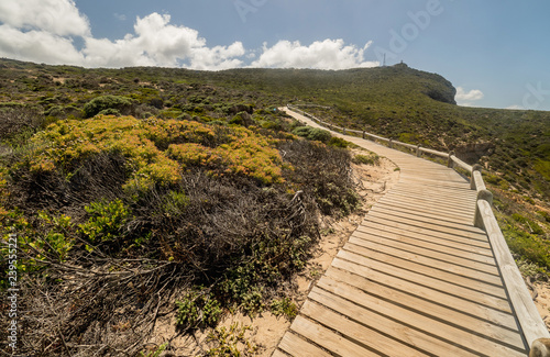 Fotografering  scenic walk at the Cape Of Good Hope on the Cape Peninsula near Cape Town, South Africa