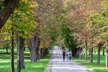 Undefined People Walking In Tivoli City Park At Slovenian Capital, Ljubljana