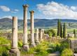 Leinwanddruck Bild - greek columns and trees in ruins park in antique roman city Volubilis in Morocco