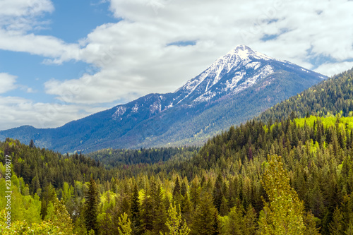 Fotografía  Colorful forest of British Columbia in spring with snowy mountains in background