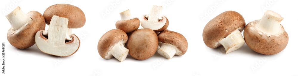 Fototapety, obrazy: Fresh champignon mushrooms isolated on white background