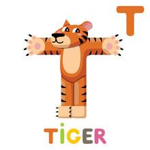 T Is For Tiger. Letter T. Tiger, Cute Illustration. Animal Alphabet.