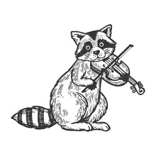 Raccoon Playing Violin Engravi...