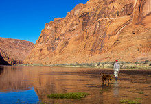 Fly Fisherman And Dog Wading C...