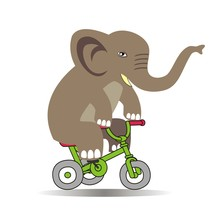 Elephant Riding A Bike Vector Illustration