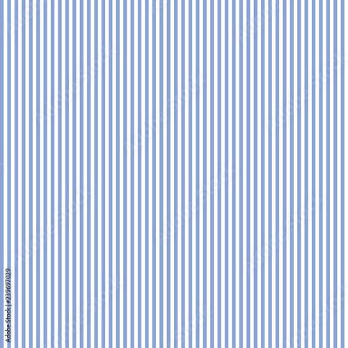 Fotografia  Seamless Blue & White Stripe Pattern