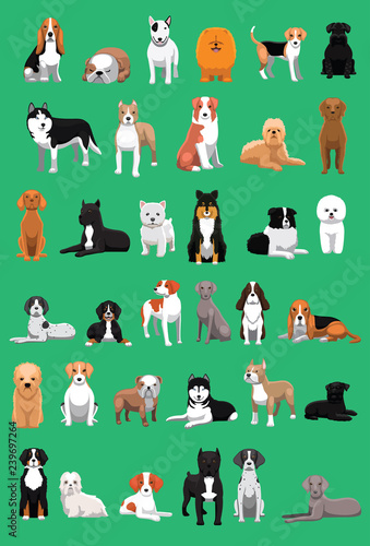 Various Medium Size Dog Breeds Cartoon Vector Illustration Wallpaper Mural