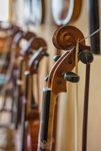 Detail Of Violin Scroll Head W...