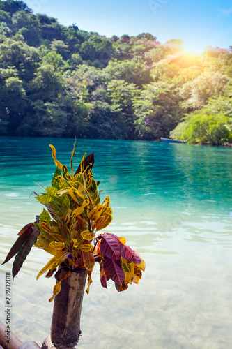 Raft On The Bank Of The Blue Lagoon Jamaica Buy This