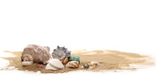 Sea Shell In Sand Pile Isolate...