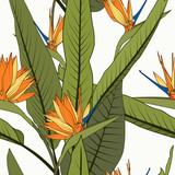 Bright cheerful tropical seamless pattern. Exotic orange strelitzia bird of paradise flowers long tall green leaves on white background. Holiday resort greenery. Botanical vector design illustration. - 239739409