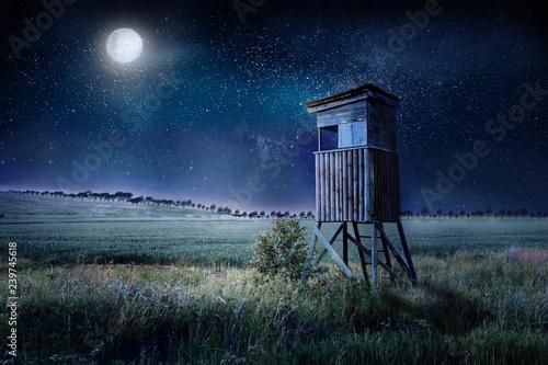 Cuadros en Lienzo Jagen in der Dämmerung am Abend auf einem Hochsitz