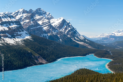 Fotografie, Obraz  Spring aerial view of the Peyto lake and snowy rocky mountains in background - Banff national park, Alberta, Canada