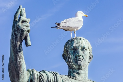 Fotografie, Obraz  Statue of emperor Caesar Nervae August with gull on the head