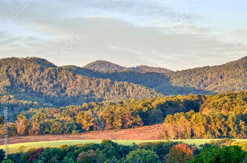 Fotografie, Obraz  Scenery, scenic landscape of vineyard hills, winery, Appalachian mountains, fore