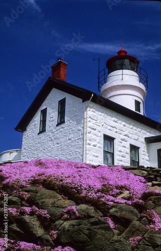 Fotografie, Obraz  Battery Point Light