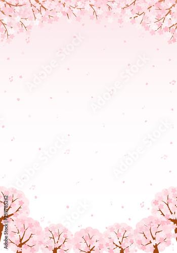 桜の音符 背景 イラスト