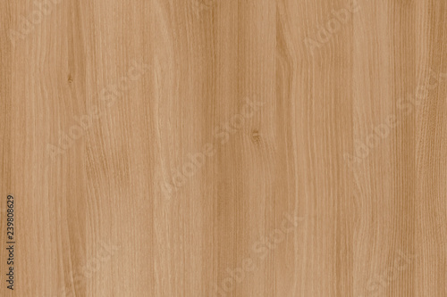 acacia timber tree wooden surface wallpaper structure texture background Wallpaper Mural