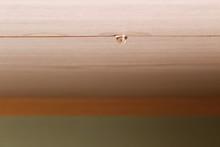 和室の天井の水漏れ