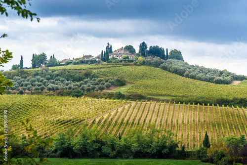 Foto  Landscape in Chianti region in province of Siena. Tuscany. Italy