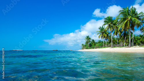 Tuinposter Tropical strand tropical beach in Sri Lanka . Summer holiday and vacation concept for tourism.