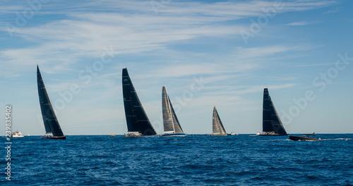 Obraz na plátně Racing sailing yachts with black sails