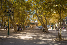 Small Park At The Central Square Of Saint-Tropez