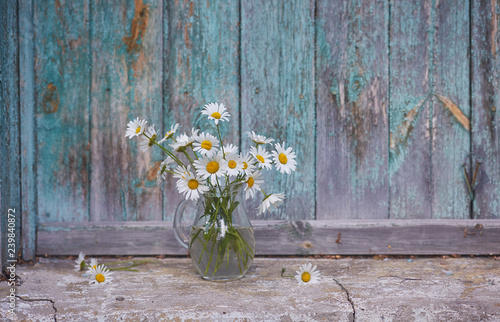 Poster de jardin Marguerites Charming still life with copy space chamomilles and daisies in water on wood background