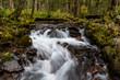 Stream in Kamikochi, Japanese Alps, Chubu Sangaku National Park