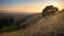 Mountaintop View Of East Bay A...