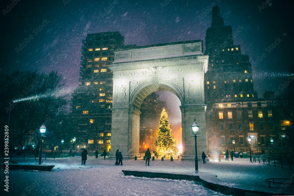 Fototapety, obrazy: Winter holiday night view of the Washington Square Park with a Christmas tree under falling snow in New York City