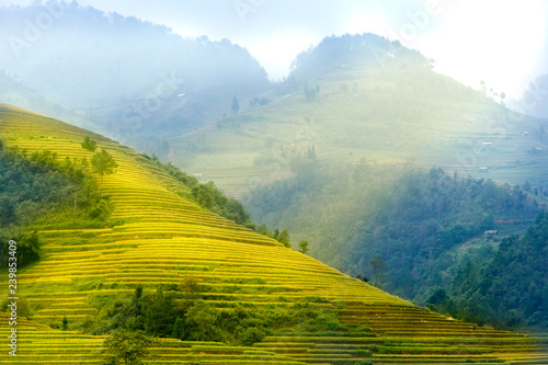 Photo sur Toile Les champs de riz Rice fields on terraced of Mu Cang Chai, YenBai, Vietnam. Vietnam landscapes.